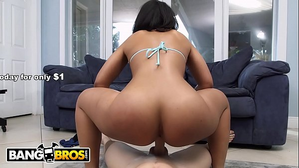 Bangbros, Working, Work